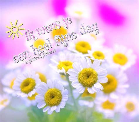 ik wens je een heel fijne dag nietje38