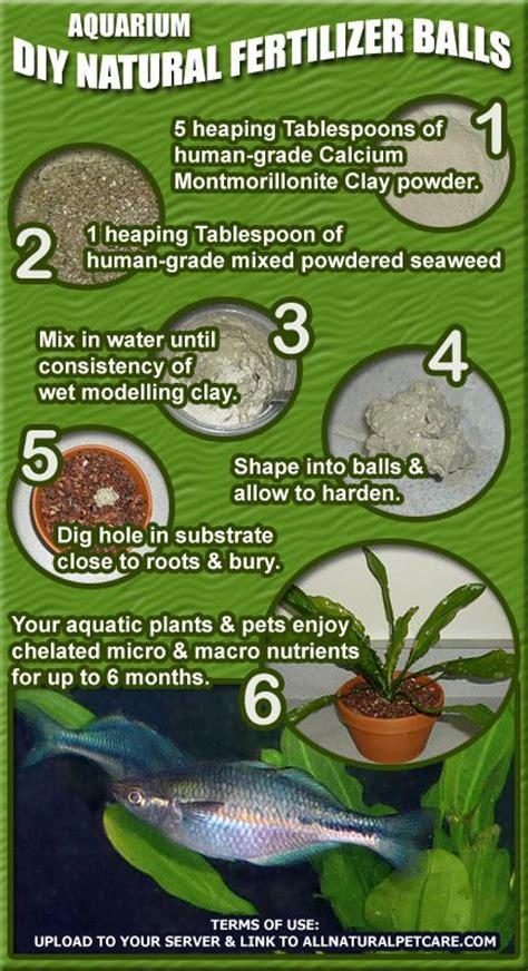 diy fertilizer balls for aquarium plants infographic in water