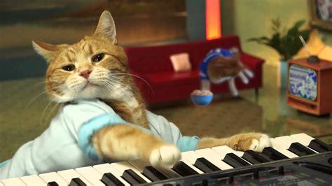 keyboard cat wallpaper gallery