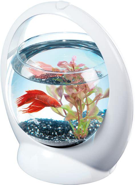 eclairage led cuisine aquarium boule design poisson combattant