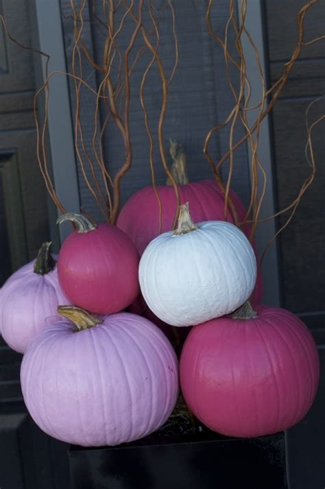 pink pumpkins pictures   images  facebook