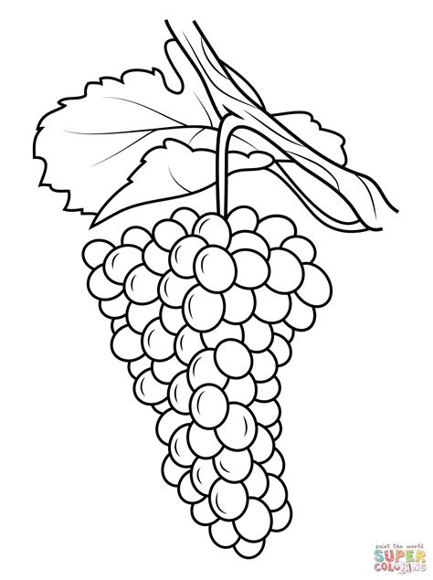 Coloring Grapes by Grapes Coloring Page Free Printable Coloring Pages
