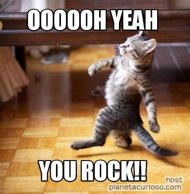 Rock Meme 20 Memes To Say You Rock Brainy Quote