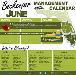 Time Management Spreadsheet Excel Beekeeping Spreadsheet Db Excel Com