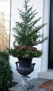 5th, And, State, Winter, Containers, Ideas, For, Diy