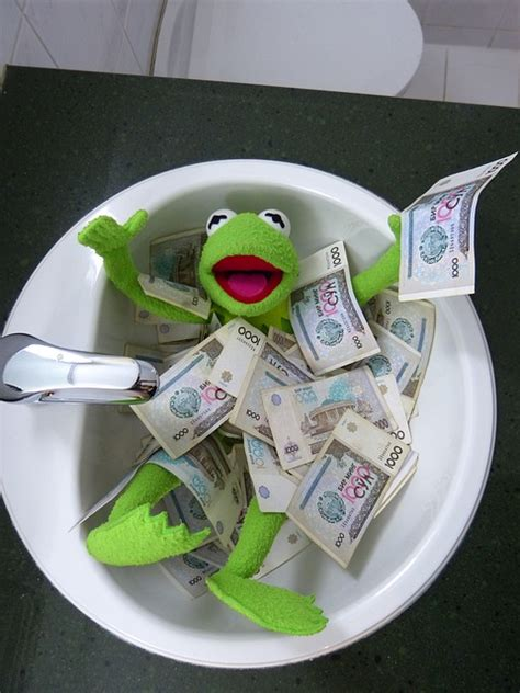 frog in the kitchen sink song free photo kermit frog money swim free image on 8288