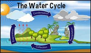 ncert class 7 geography solutions water chapter 5 part 1