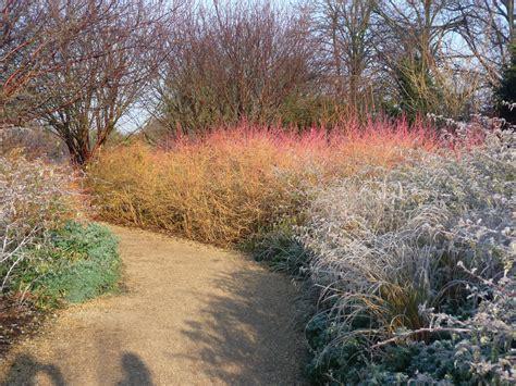 Winter Garden : Garden Photographer's Association