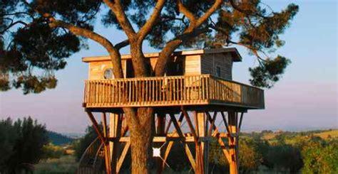 le case sugli alberi piu belle  particolari del mondo