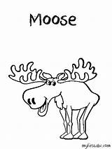 Moose Coloring Head Colouring Cartoon Antlers Clip Template Popular Coloringhome Library Clipart Realistic sketch template