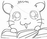 Coloring Hamtaro Ham Template Printable Popular Sketch Library Clipart Line sketch template
