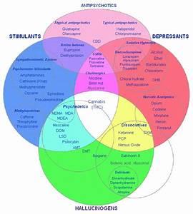 Unit 5  States Of Consciousness