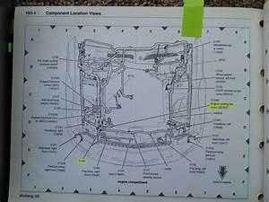 1989 Mustang Headlight Wiring Diagram