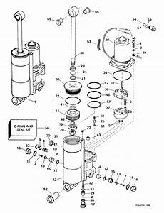 Johnson Power Trim  Tilt Parts For 1999 50hp J50pleea Outboard Motor