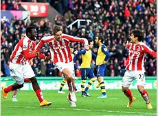 Peter Crouch of Stoke City celebrates scoring the opening