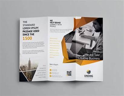 Brochure Fold Tri Template Fancy Templates Word