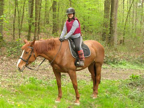 chambre d hote en seine et marne randonnee cheval belgique
