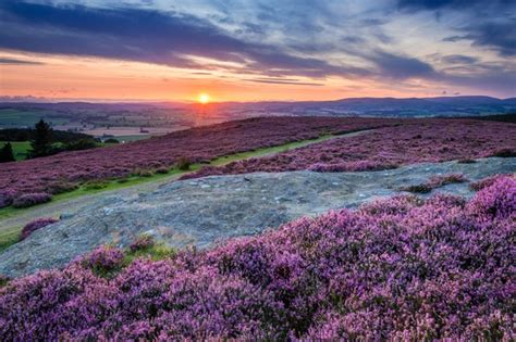 walk simonside hills northumberland countryfilecom