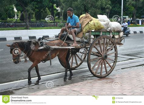 indian cart indian horse cart in the environmental initiative