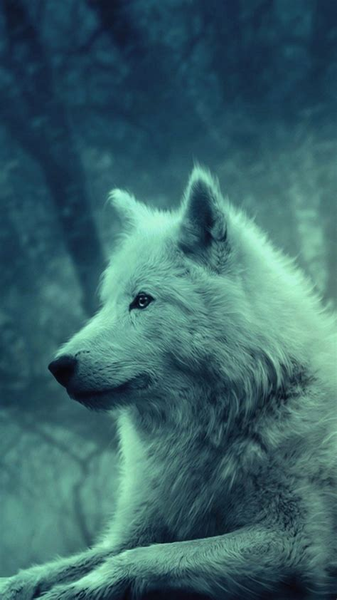 Cute Wolf Desktop Wallpaper