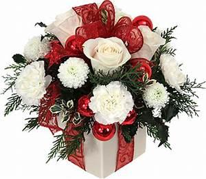 Rose De Noel Synonyme : offrir des fleurs pour no l et le nouvel anle blog fleursinfo ~ Medecine-chirurgie-esthetiques.com Avis de Voitures