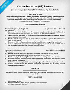 human resources resume sample writing tips resume With hr resume template word