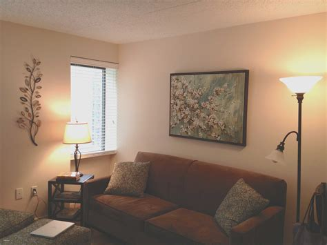 Living Room Decorating Ideas On A Budget Uk by College Apartment Decorating Ideas On A Budget Unique