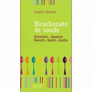 Bicarbonate De Soude Pas Cher : bicarbonate de soude broch sophie hachet achat ~ Farleysfitness.com Idées de Décoration