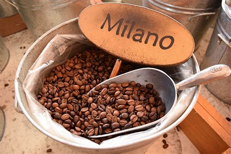 I have never had coffee quite like this before and it was a bit of a sensory overload when i had the opportunity to taste test 3 of. Milano | Coffee Beans