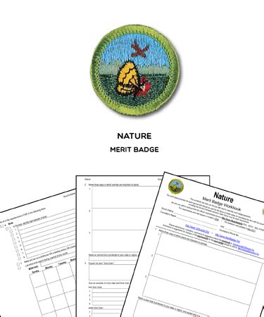 nature merit badge worksheet nature merit badge worksheet requirements