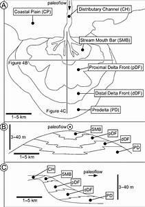 Conceptual Model Of A Fluvialdominated Delta Lobe Showing