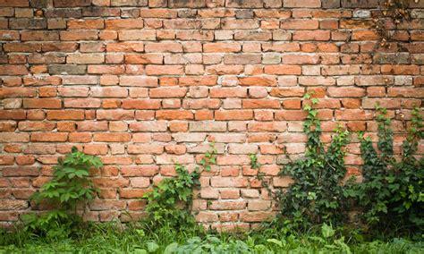 Deko Ziegelwand Garten bauanleitung ziegelmauer f 252 r den garten das haus
