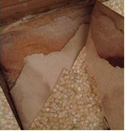 Linoleum Flooring: Linoleum Flooring Glue Removal