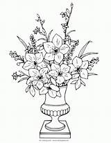 Coloring Complex Flower Adult Popular sketch template
