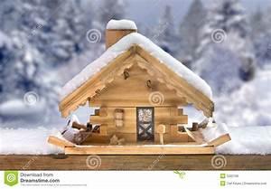Wood Project Ideas: Useful Winter bird house plans