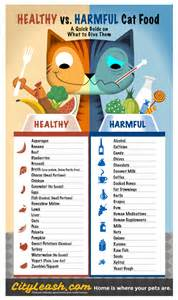 healthy and harmful foods for cats cityleash