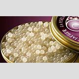 Caviar Harvesting   422 x 247 jpeg 21kB