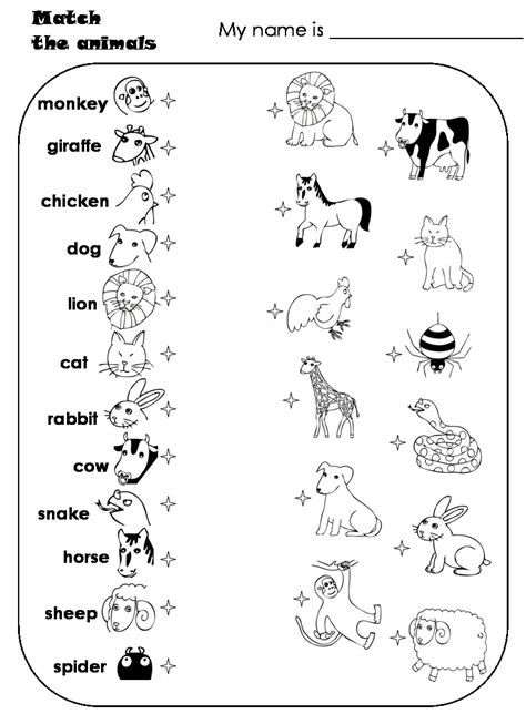 worksheets for preschoolers matching animals match the