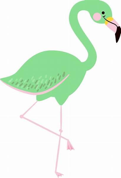 Summer Clipart Fun Things Pretty Flamingos