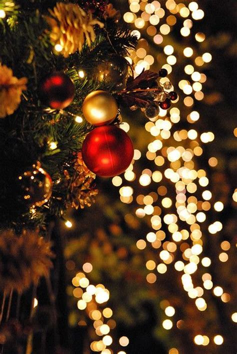 red and gold christmas lights 32 amazing and gold d 233 cor ideas digsdigs
