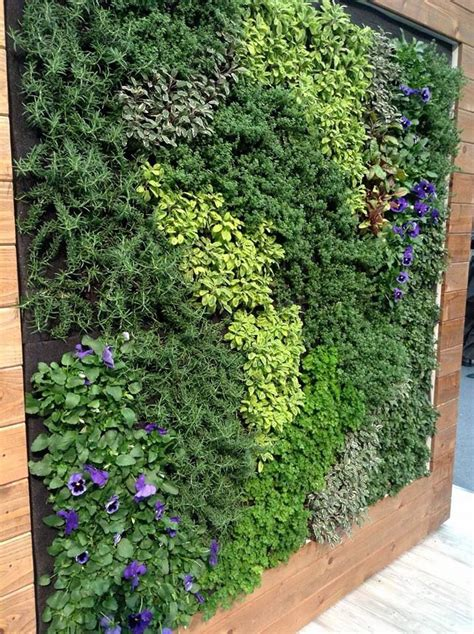Plants For Vertical Gardens by Edible Living Wall Elements Vertical Garden Vertical