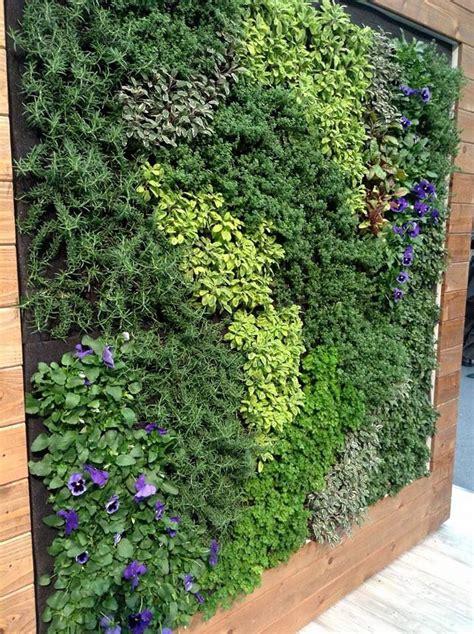 Edible Vertical Garden by Edible Living Wall Vertical Garden Wall Mur V 233 G 233 Tal