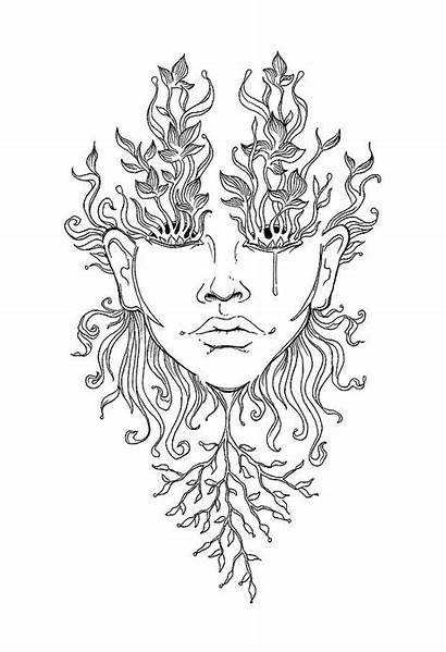 Growth Drawing Sarah Llewellyn Drawings Face 12th