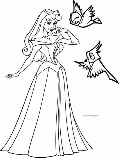 Coloring Disney Aurora Princess Birds