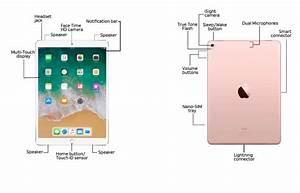 Apple 10 5    9 7    12 9-inch Ipad Pro Diagram