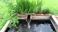 pond shapes and design best koi pond design! - YouTube