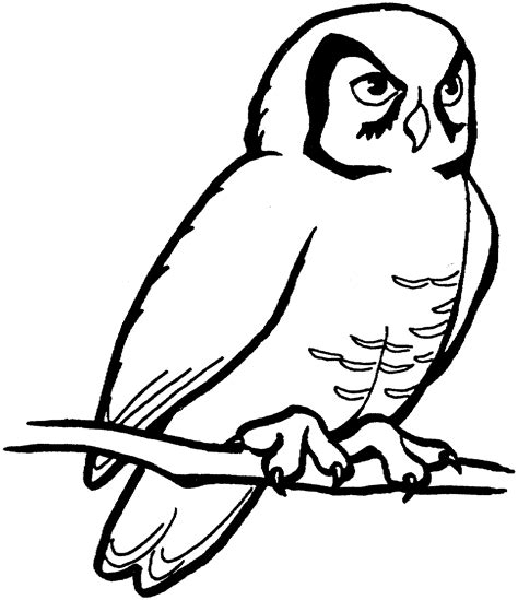 Free Printable Owl Coloring Pages For Kids