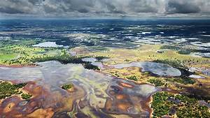 Pantanal in Brazil Thousand Wonders
