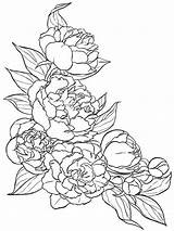 Coloring Peony Flower Pages Flowers Drawing Tattoo Drawings Pattern Sketches Printable Line Draw цветочные узоры Colors Google Recommended Getcolorings рисунки sketch template