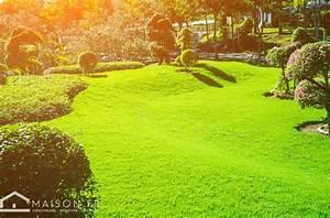 Refaire Son Jardin : refaire son gazon comment avoir une nouvelle pelouse ~ Nature-et-papiers.com Idées de Décoration